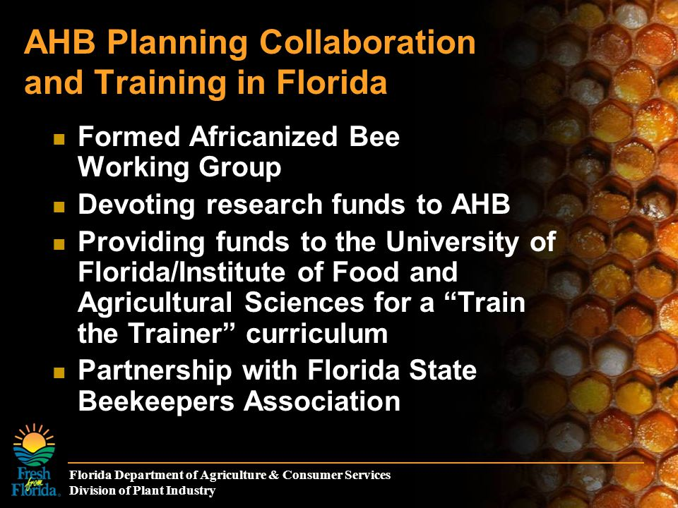 Florida Department of Agriculture & Consumer Services Division of Plant Industry AHB Planning Collaboration and Training in Florida Formed Africanized Bee Working Group Devoting research funds to AHB Providing funds to the University of Florida/Institute of Food and Agricultural Sciences for a Train the Trainer curriculum Partnership with Florida State Beekeepers Association