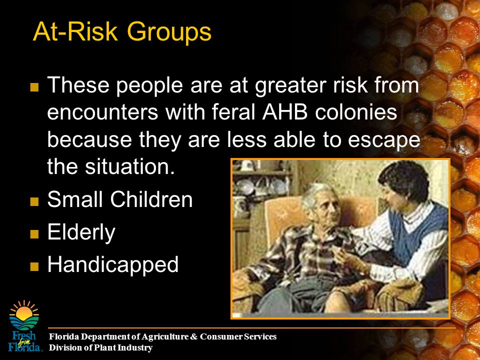 Florida Department of Agriculture & Consumer Services Division of Plant Industry At-Risk Groups These people are at greater risk from encounters with feral AHB colonies because they are less able to escape the situation.