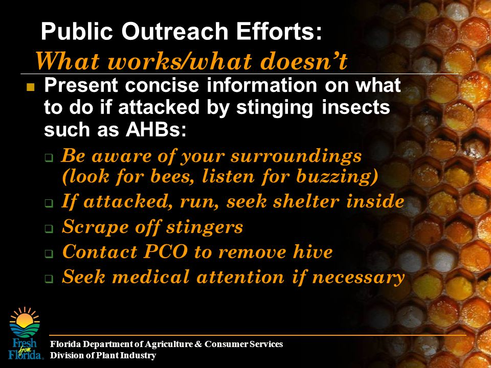 Florida Department of Agriculture & Consumer Services Division of Plant Industry Public Outreach Efforts: What works/what doesn't Present concise information on what to do if attacked by stinging insects such as AHBs:  Be aware of your surroundings (look for bees, listen for buzzing)  If attacked, run, seek shelter inside  Scrape off stingers  Contact PCO to remove hive  Seek medical attention if necessary