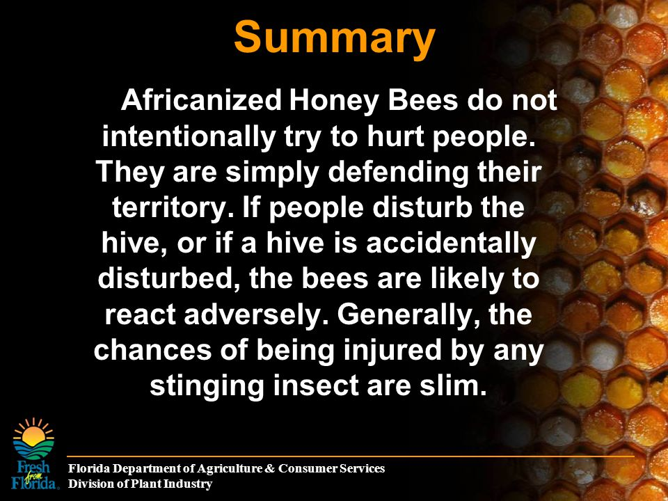 Florida Department of Agriculture & Consumer Services Division of Plant Industry Summary Africanized Honey Bees do not intentionally try to hurt peopl