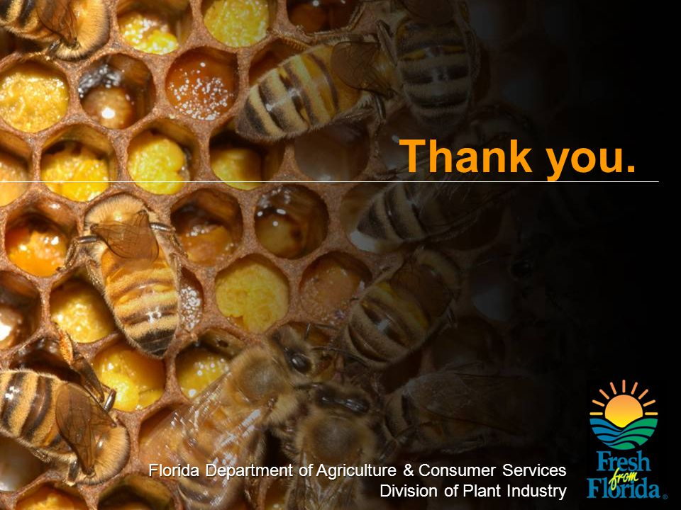 Florida Department of Agriculture & Consumer Services Division of Plant Industry Thank you. Florida Department of Agriculture & Consumer Services Divi
