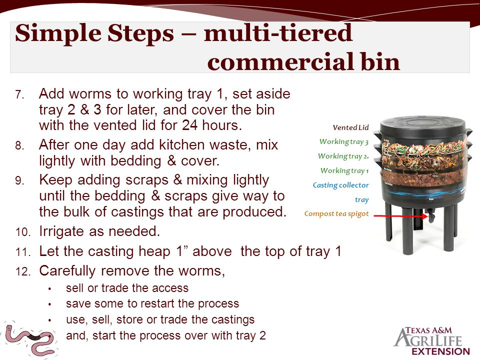 7. Add worms to working tray 1, set aside tray 2 & 3 for later, and cover the bin with the vented lid for 24 hours. 8. After one day add kitchen waste