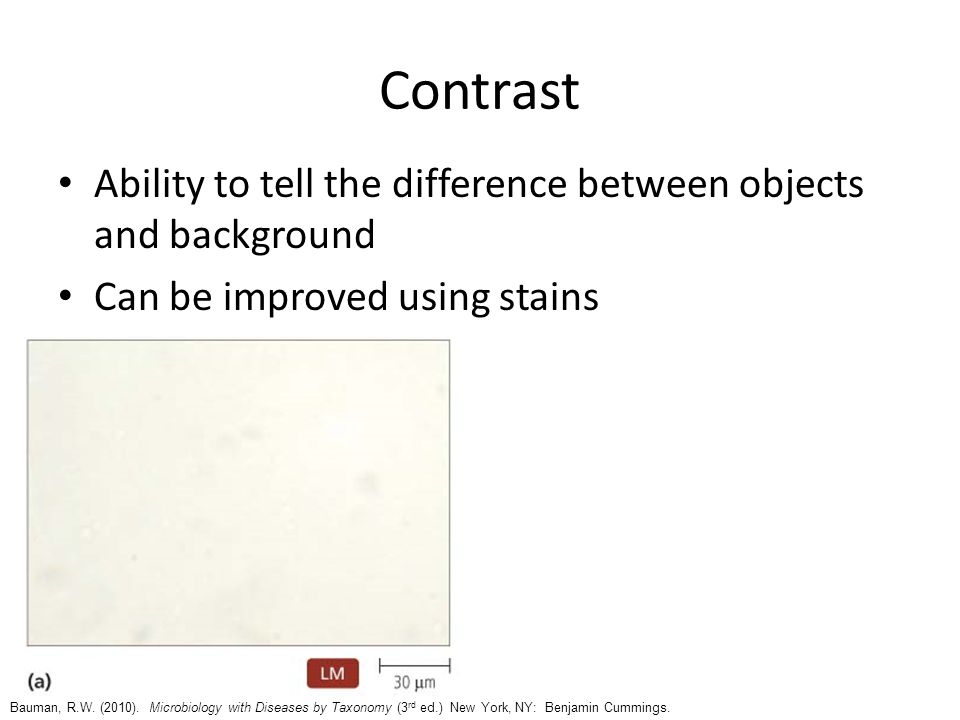 Contrast Ability to tell the difference between objects and background Can be improved using stains Bauman, R.W. (2010). Microbiology with Diseases by