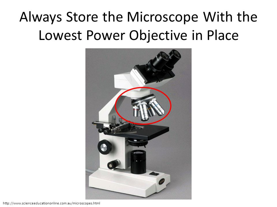 Always Store the Microscope With the Lowest Power Objective in Place http://www.scienceeducationonline.com.au/microscopes.html