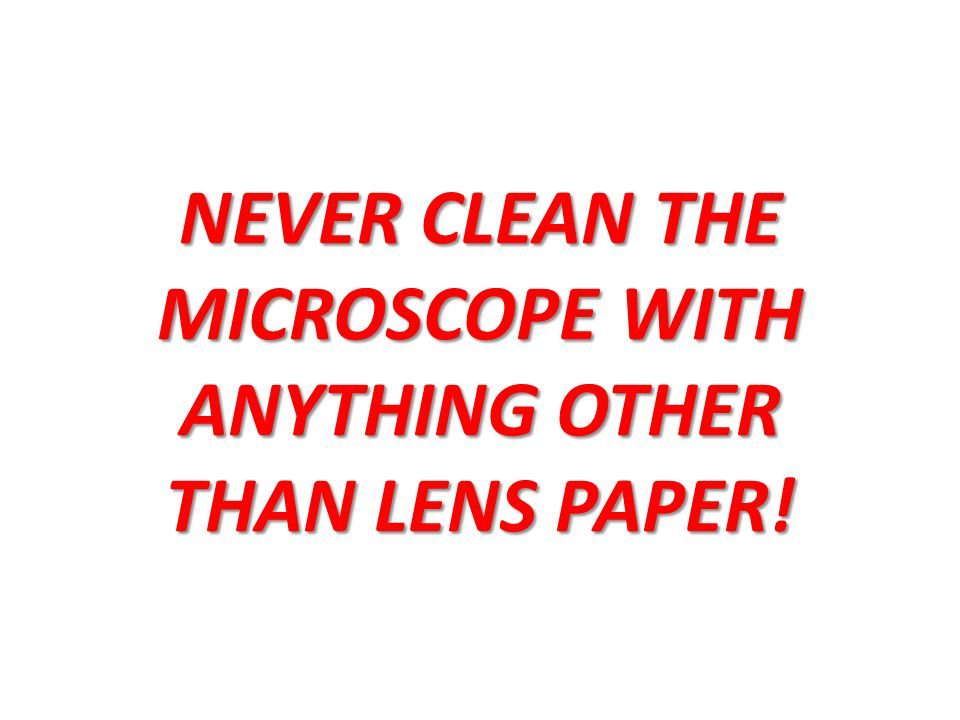 NEVER CLEAN THE MICROSCOPE WITH ANYTHING OTHER THAN LENS PAPER!