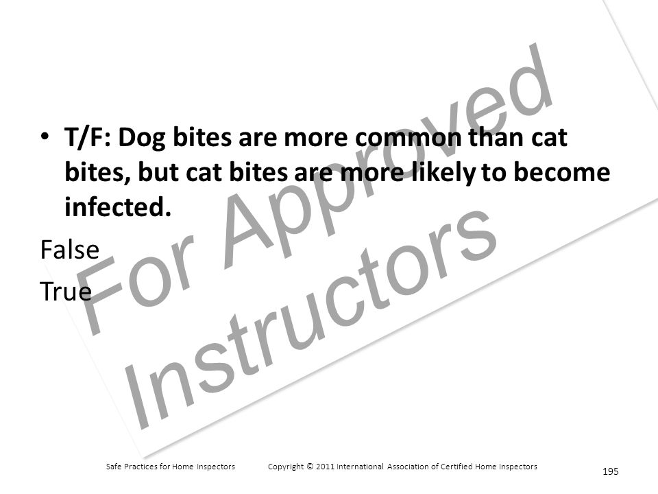 Safe Practices for Home Inspectors Copyright © 2011 International Association of Certified Home Inspectors For Approved Instructors T/F: Dog bites are more common than cat bites, but cat bites are more likely to become infected.