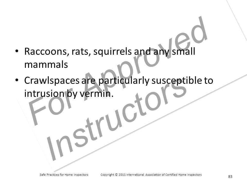 Safe Practices for Home Inspectors Copyright © 2011 International Association of Certified Home Inspectors For Approved Instructors Raccoons, rats, squirrels and any small mammals Crawlspaces are particularly susceptible to intrusion by vermin.