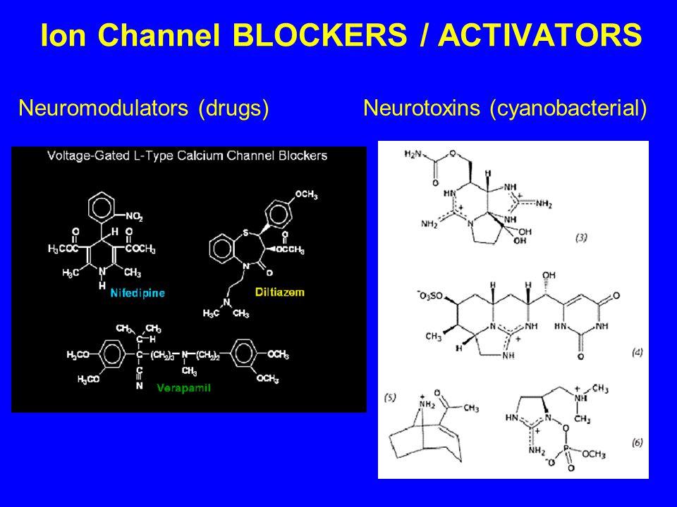 Ion Channel BLOCKERS / ACTIVATORS Neuromodulators (drugs) Neurotoxins (cyanobacterial)