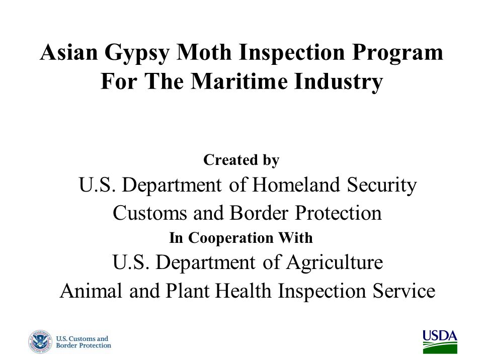 Asian Gypsy Moth Inspection Program For The Maritime Industry Created by U.S.