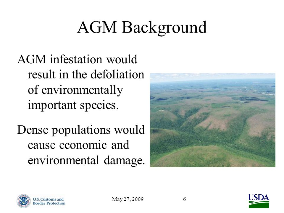 May 27, 20096 AGM Background AGM infestation would result in the defoliation of environmentally important species. Dense populations would cause econo