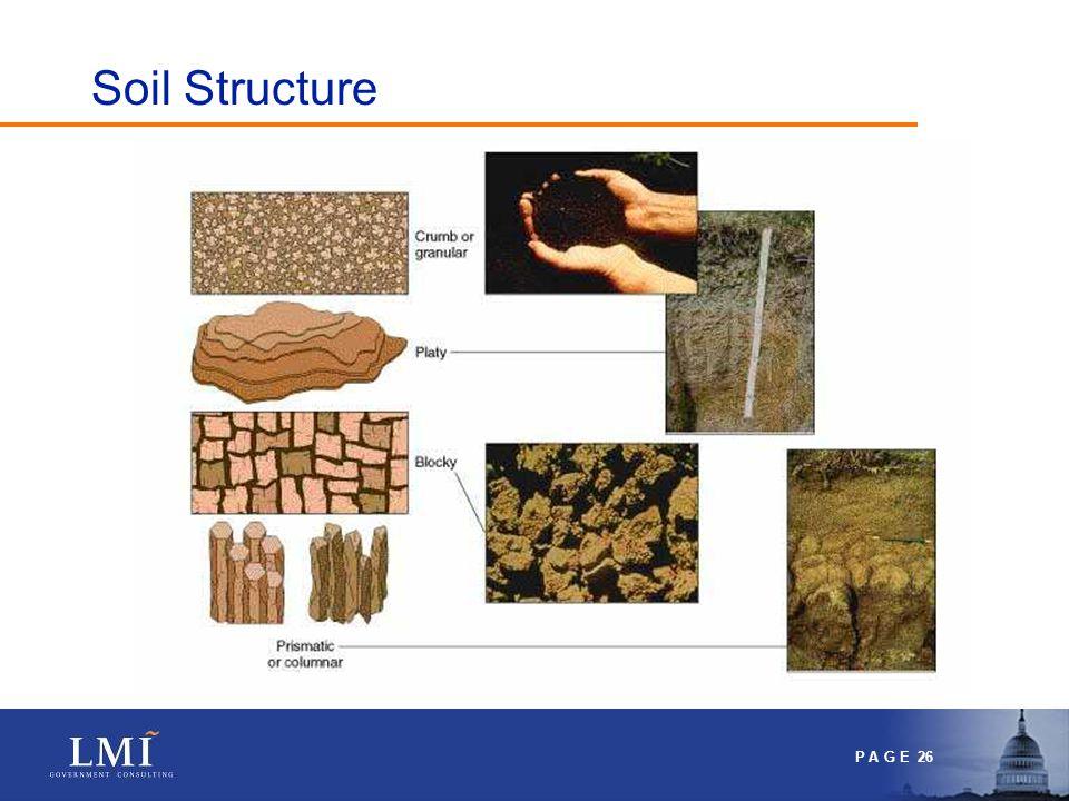 P A G E 27 So what about structure? Drainage Plant penetration Oxygen penetration