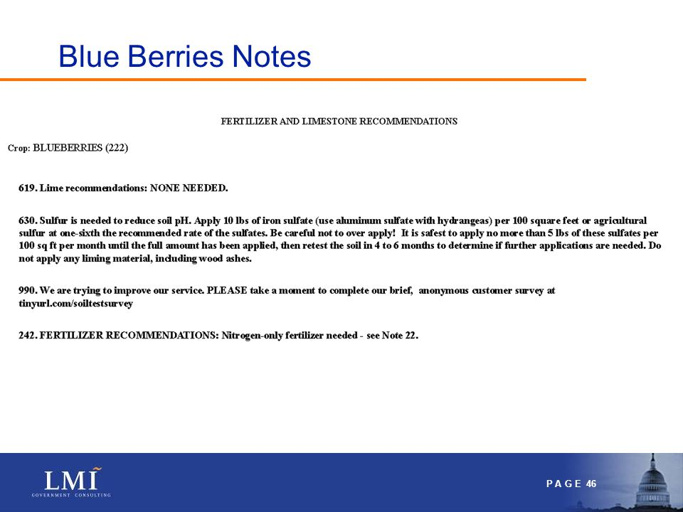 P A G E 46 Blue Berries Notes