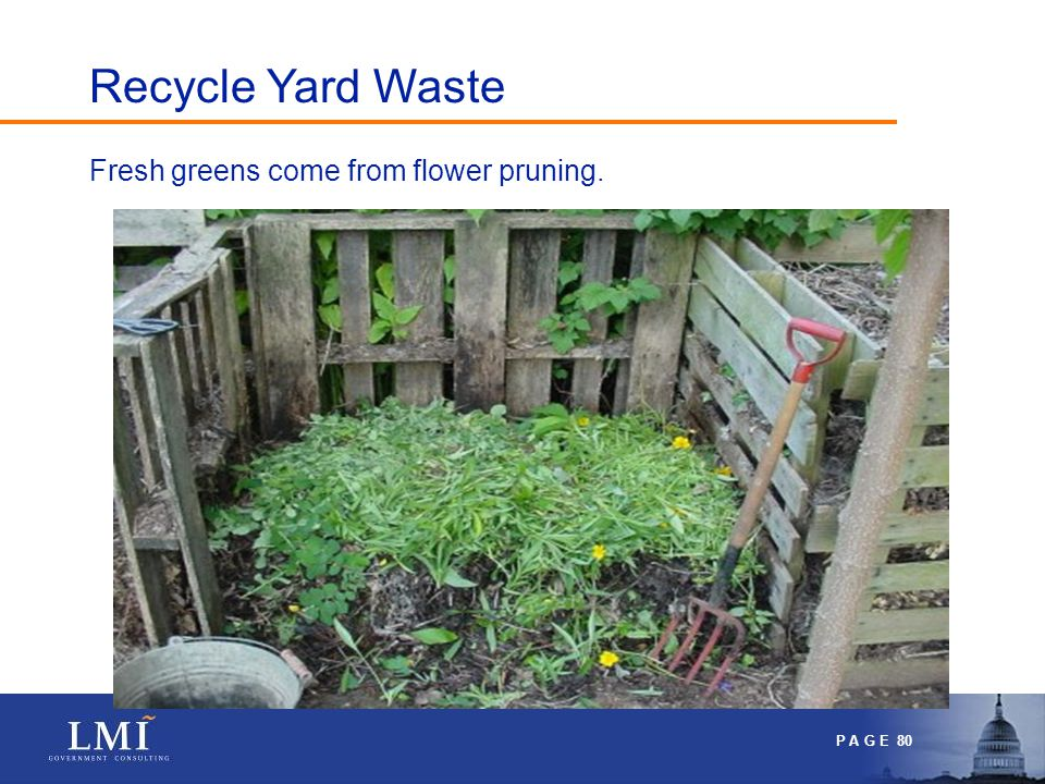 P A G E 80 Fresh greens come from flower pruning. Recycle Yard Waste