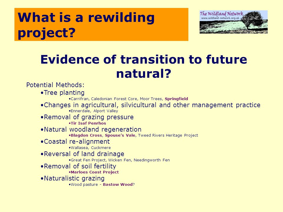 What is a rewilding project. Evidence of transition to future natural.