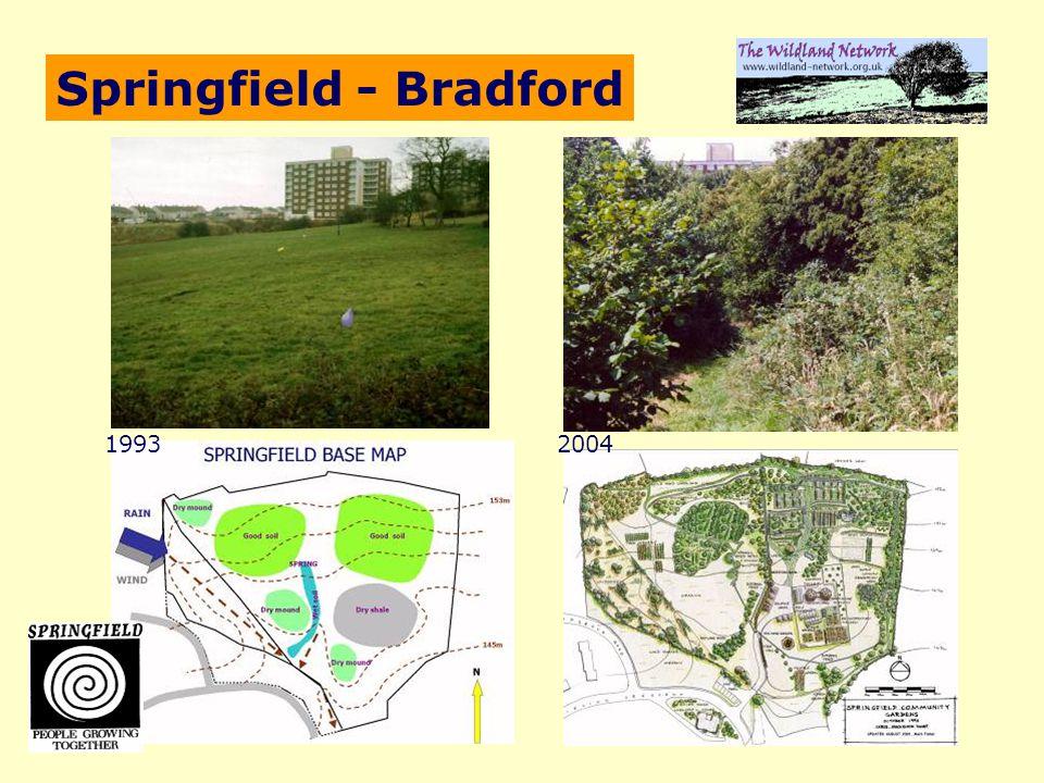 Springfield - Bradford 19932004