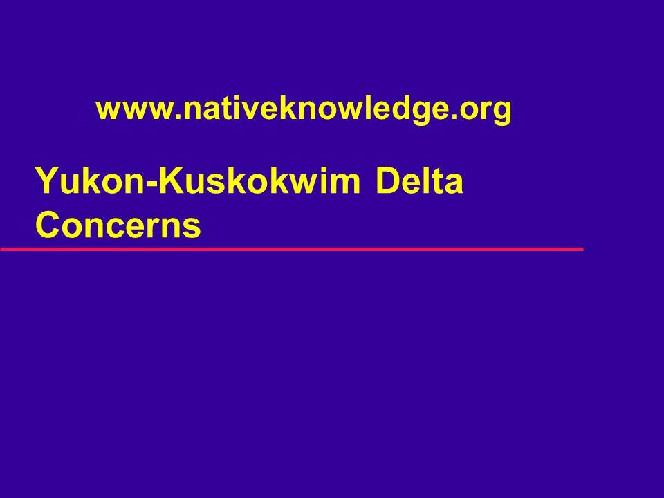 Yukon-Kuskokwim Delta Concerns www.nativeknowledge.org