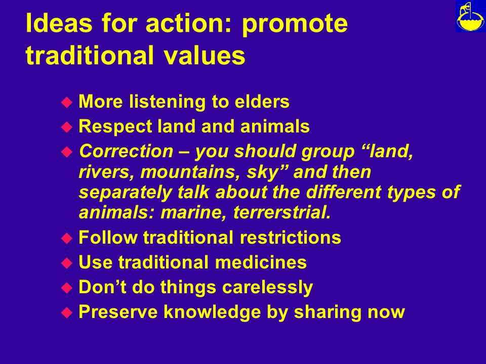 Ideas for action: promote traditional values u More listening to elders u Respect land and animals u Correction – you should group land, rivers, mountains, sky and then separately talk about the different types of animals: marine, terrerstrial.