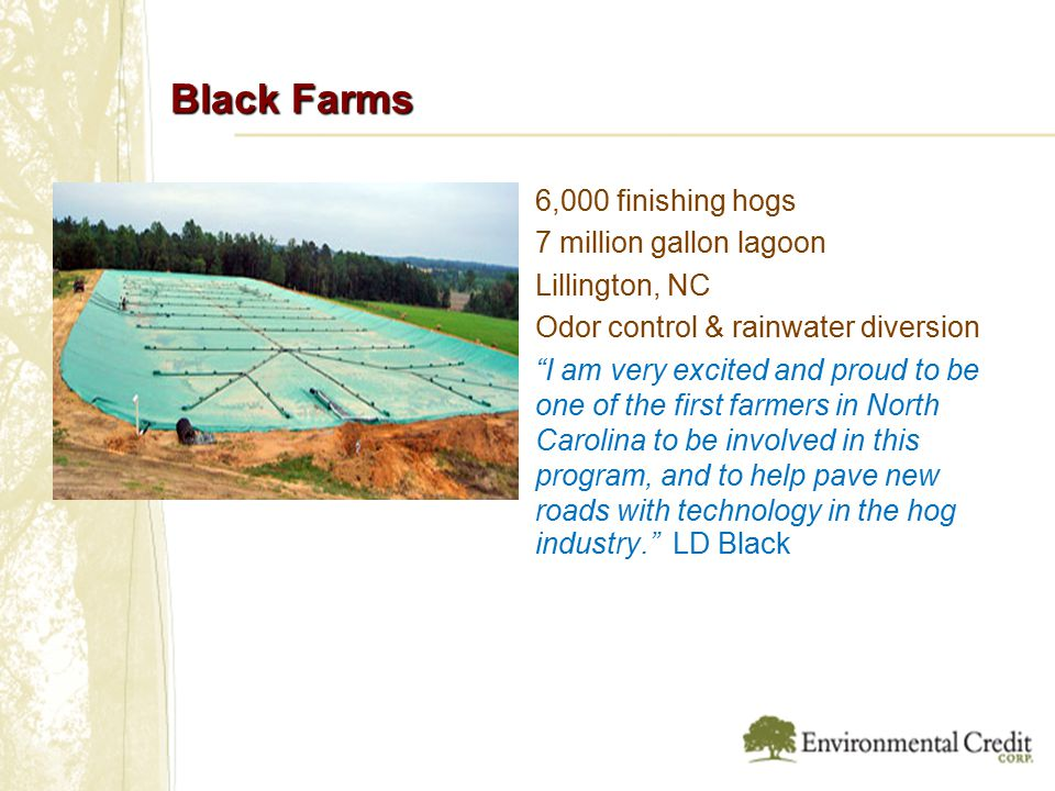 Black Farms 6,000 finishing hogs 7 million gallon lagoon Lillington, NC Odor control & rainwater diversion I am very excited and proud to be one of the first farmers in North Carolina to be involved in this program, and to help pave new roads with technology in the hog industry. LD Black