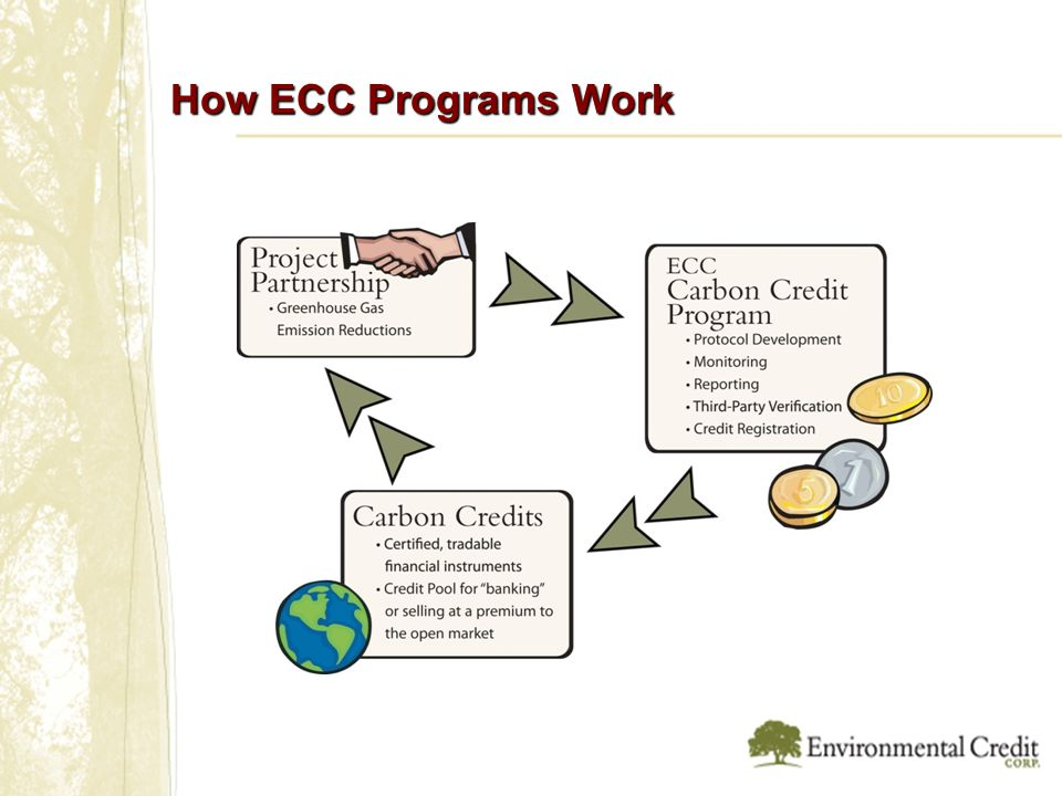 How ECC Programs Work