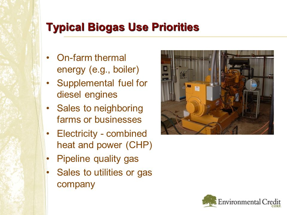 Typical Biogas Use Priorities On-farm thermal energy (e.g., boiler) Supplemental fuel for diesel engines Sales to neighboring farms or businesses Electricity - combined heat and power (CHP) Pipeline quality gas Sales to utilities or gas company