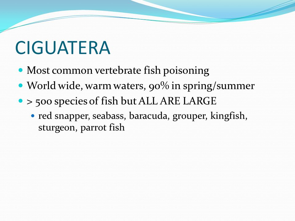 CIGUATERA Most common vertebrate fish poisoning World wide, warm waters, 90% in spring/summer > 500 species of fish but ALL ARE LARGE red snapper, sea