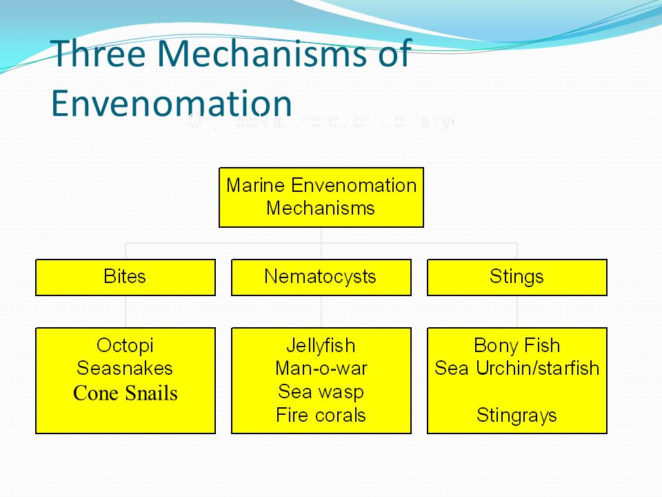 SCOMBROID Presentation similar to allergic reaction FLUSHING of face, neck, torso (diffuse erythema) ………can progress to urticaria Numbness, tingling, burning around mouth Can have bronchospasm Diagnosis = increased histamine levels in serum or urine (can also test fish) NOT a fish allergy if others with same symptoms or if fish can be tested
