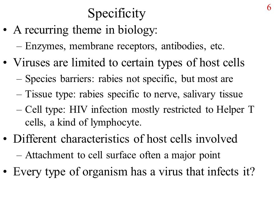 6 Specificity A recurring theme in biology: –Enzymes, membrane receptors, antibodies, etc.