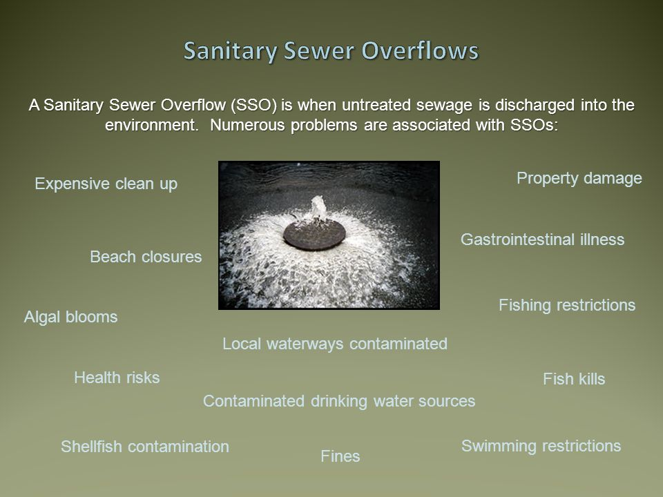 Expensive clean up Property damage Beach closures Local waterways contaminated Contaminated drinking water sources Health risks Fish kills Gastrointestinal illness Swimming restrictions Fishing restrictions Algal blooms Shellfish contamination A Sanitary Sewer Overflow (SSO) is when untreated sewage is discharged into the environment.