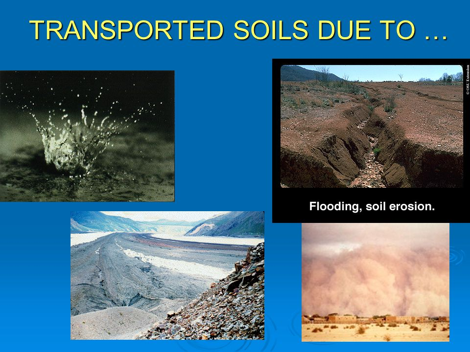 TRANSPORTED SOILS DUE TO …