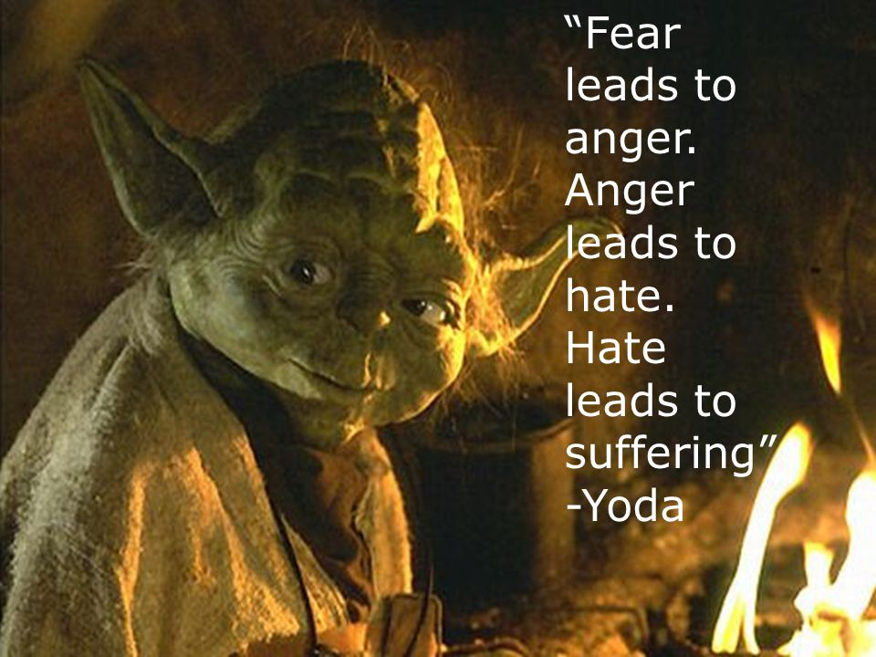 """""""Fear leads to anger. Anger leads to hate. Hate leads to suffering"""" -Yoda"""