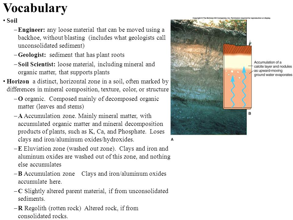 Vocabulary Soil –Engineer: any loose material that can be moved using a backhoe, without blasting (includes what geologists call unconsolidated sedime