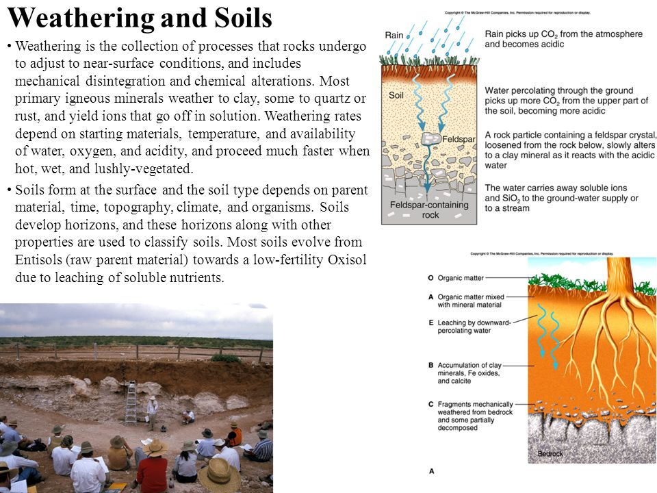 Weathering and Soils Weathering is the collection of processes that rocks undergo to adjust to near-surface conditions, and includes mechanical disint