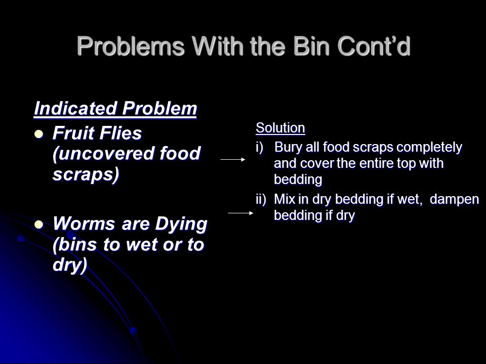 Problems With the Bin Cont'd Indicated Problem Fruit Flies (uncovered food scraps) Fruit Flies (uncovered food scraps) Worms are Dying (bins to wet or