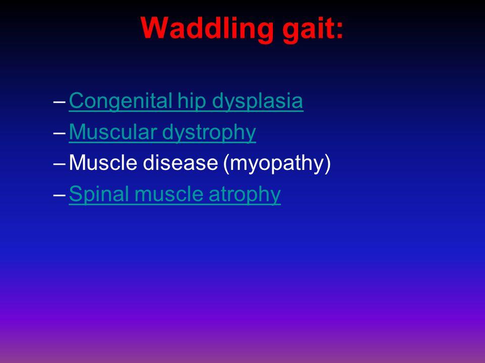 Waddling gait: –Congenital hip dysplasiaCongenital hip dysplasia –Muscular dystrophyMuscular dystrophy –Muscle disease (myopathy) –Spinal muscle atrophySpinal muscle atrophy