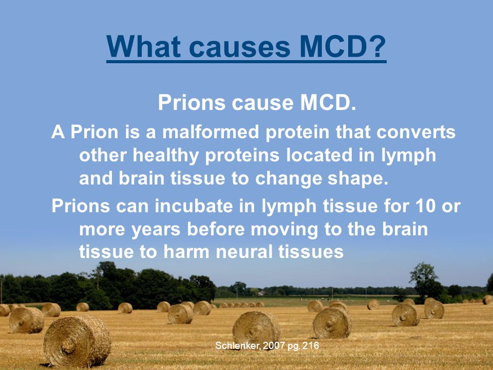 What causes MCD. Prions cause MCD.