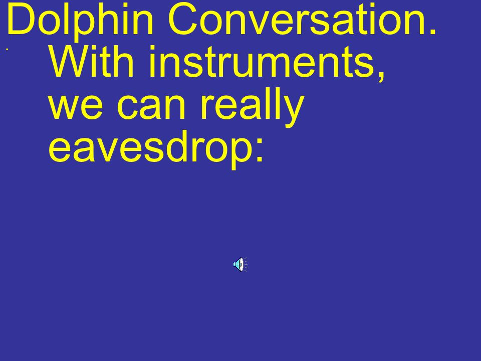 Dolphin Conversation. With instruments, we can really eavesdrop:.