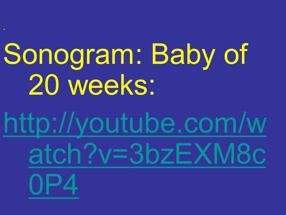 Sonogram: Baby of 20 weeks: http://youtube.com/w atch v=3bzEXM8c 0P4.