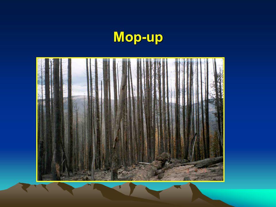 Mop-up