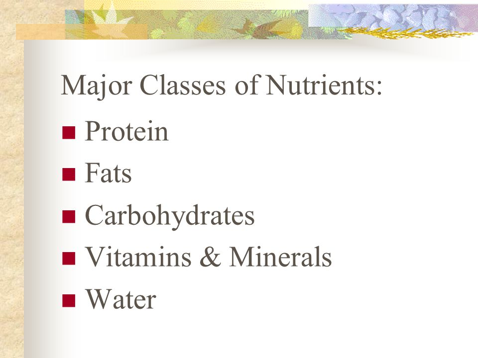 Major Classes of Nutrients: Protein Fats Carbohydrates Vitamins & Minerals Water
