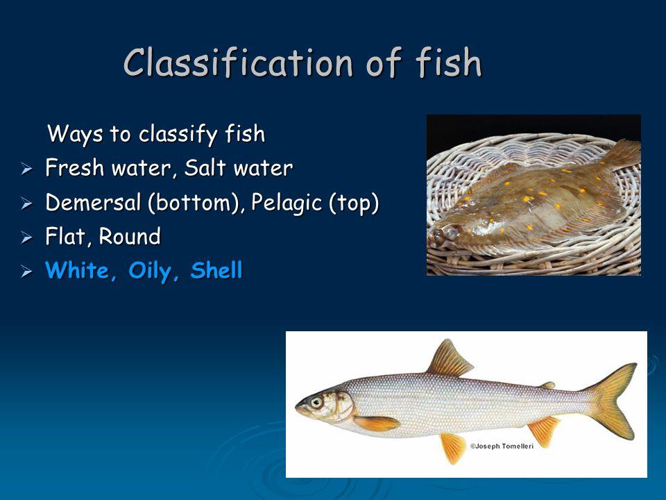 Classification of Fish WhiteOilyShell CodHerringMussels HaddockMackerelPrawns WhitingSalmonLobster SoleTunaCrab PlaiceSardinesOysters