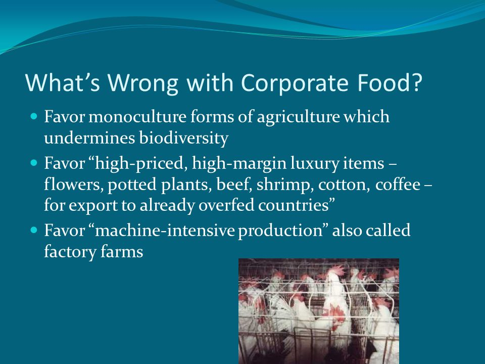 What's Wrong with Corporate Food.