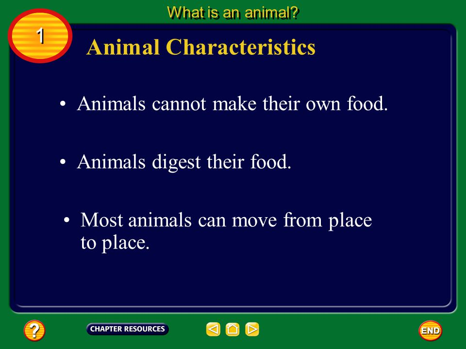 1 1 Section Check Question 3 Which describes most of the cells found in animals.