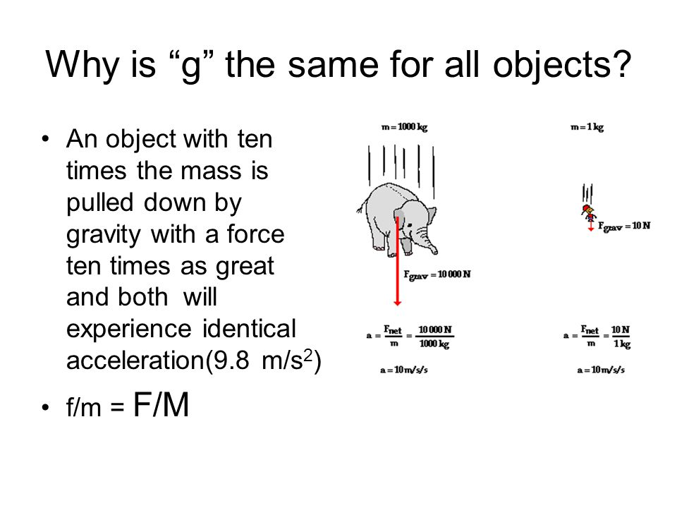 Why is g the same for all objects.