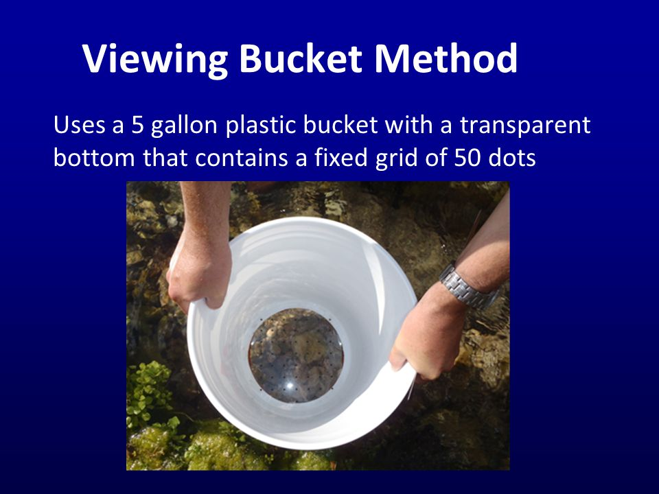 Viewing Bucket Method Uses a 5 gallon plastic bucket with a transparent bottom that contains a fixed grid of 50 dots