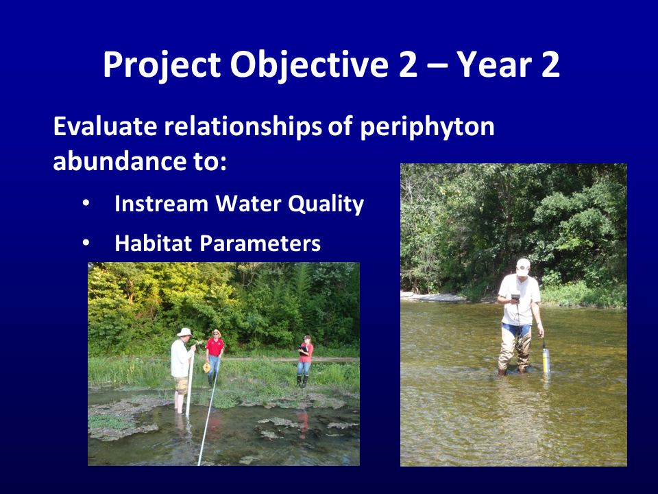 Project Objective 2 – Year 2 Evaluate relationships of periphyton abundance to: Instream Water Quality Habitat Parameters