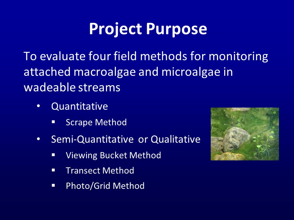 Project Purpose To evaluate four field methods for monitoring attached macroalgae and microalgae in wadeable streams Quantitative  Scrape Method Semi-Quantitative or Qualitative  Viewing Bucket Method  Transect Method  Photo/Grid Method