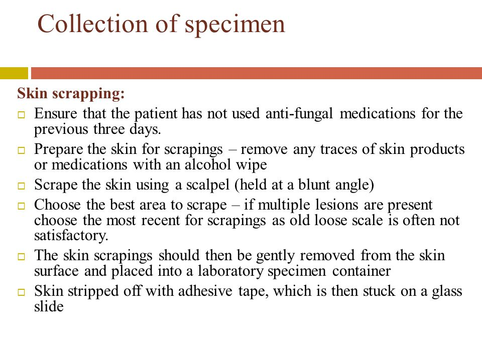Collection of specimen Skin scrapping:  Ensure that the patient has not used anti-fungal medications for the previous three days.