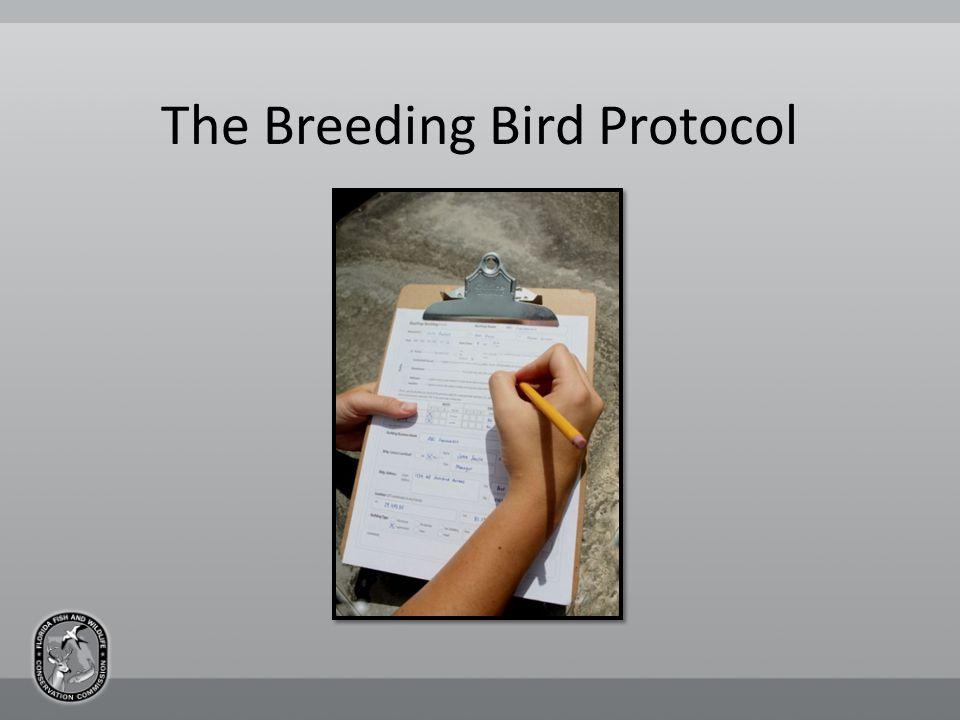 The Breeding Bird Protocol