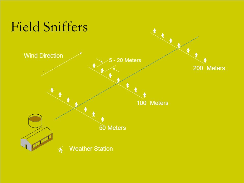 Field Sniffers 100 Meters Weather Station Wind Direction 50 Meters 5 - 20 Meters 200 Meters