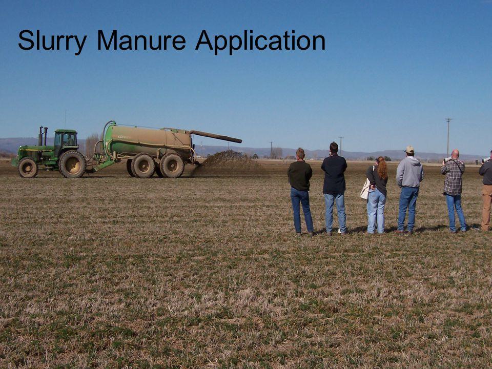 Slurry Manure Application